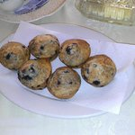 Delicious Fresh-Baked Muffins