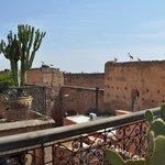 Vistas del Palacio Badi desde la terraza (y cigüeñas)