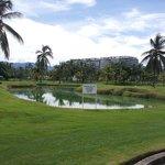 Crocodile habitat on Marina Vallarta golf course