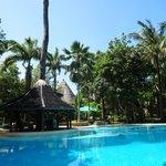 Het zwembad in de prachtige tropische tuin