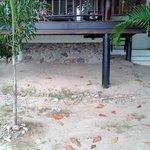 i cocci sotto il bungalow (sulla spiaggia)