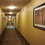 The Hallway Leading to Our Room