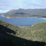 Wineglass Bay Day Tours