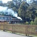 Puffing Billy 5