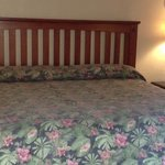 Room #6 -- King Bed with Bedside Table & Lamps
