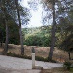 Desde la puerta de nuestra habitación: empinada rampa de acceso y paisaje boscoso