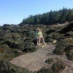 Walking stick was helpful seaweed everywhere low tide
