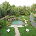 piscine naturelle et son parc