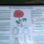 Description of rose gardens