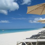 Great beach chairs and umbrellas.