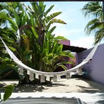 Hammock on your own terrace!
