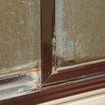 mold/mildew on shower door