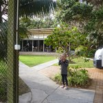 Pinetrees Lodge