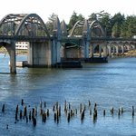 Siuslaw Bridge from the south