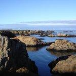 Sea Glass Beach Cove