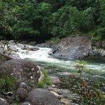 Mossman Gorge - a short drive away