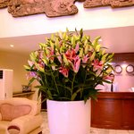 "Nice Flower with """"Jason"""" Receptionist"