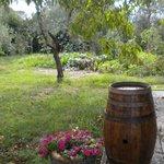 Foto de Agriturismo La Torretta
