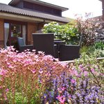 Gardens in our Courtyard at the Brook Hotel Norwich