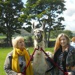 With our Llama Morgan