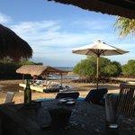 restaurant and bar on the mangroves