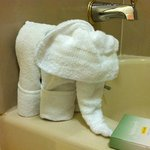 Cute towel elephant!