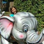 Manège des éléphants