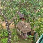 Vue des cottages de la cabane dans les arbres