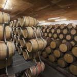 """Take our """"Unforgettable"""" Tour to see how wine is made."""