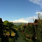 View of Arenal Volcano from the pool