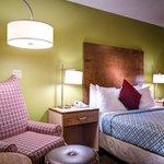 Guest room with 1 queen bed