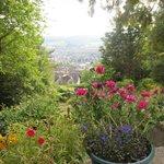 Blick aus dem Garten auf Minehead