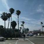 ocean avenue 8