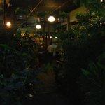 Oasis in Bangkok