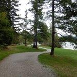 Path in Lake Padden