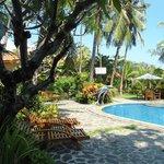 jardin et piscine de l'hotel
