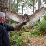 My husband with one of the Owls