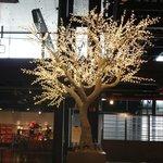 Tree of glass