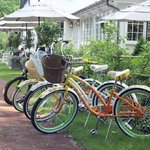 Bikes on the towpath