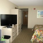 Room 239