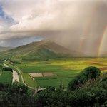 Rainbow at Hanalei Valley.