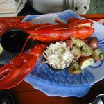 Lobster with potatoes & colslaw