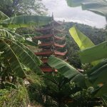 The pagoda  at the top