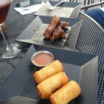 Plum Honey Ginger Ribs and Spring Rolls