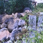 another waterfall in the center garden