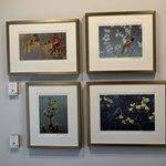 Robert Bateman Center Gallery of Birds even featured bird calls