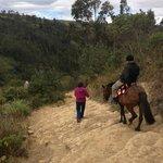 Horse Ride Down