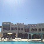Storks above Hotel Fanadir