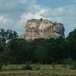 Aussicht vom Garten auf den Lion Rock
