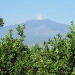 vista dell'Etna